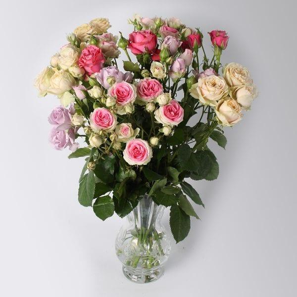 Mixboeket van al onze mooiste rozen samen. Eelke trosroos zijn eigen kracht. De zachte tonen van Femke, de pracht van Dance de Meilland en de artistieke tonen van Artesia. Een boeket om van te dromen!